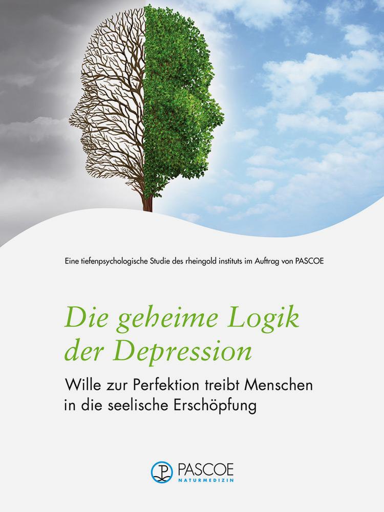Štúdia Pascoe 2015 – tajná logika depresie